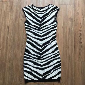 Express zebra print dress